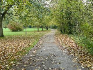 Abingdon millstream footpath
