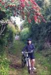 berry-biker