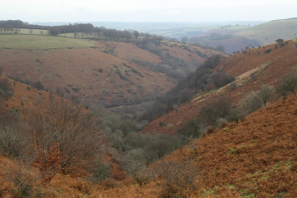 The deep valleys of Exmoor