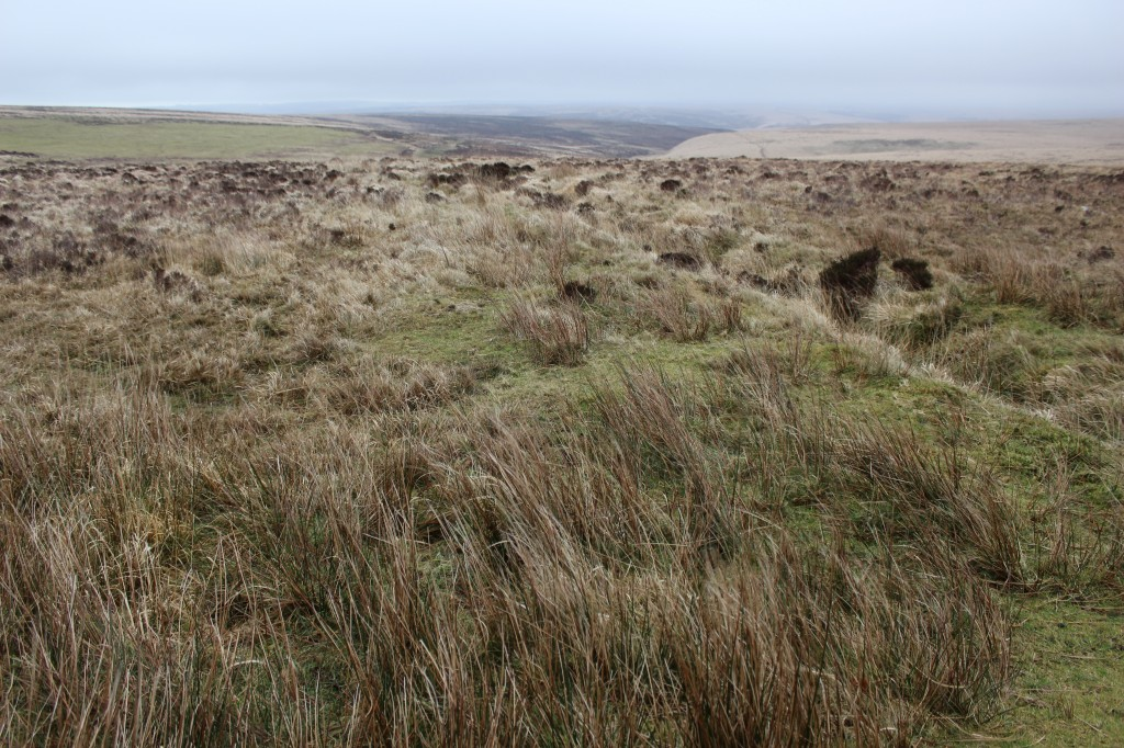 The moorlands of Exmoor