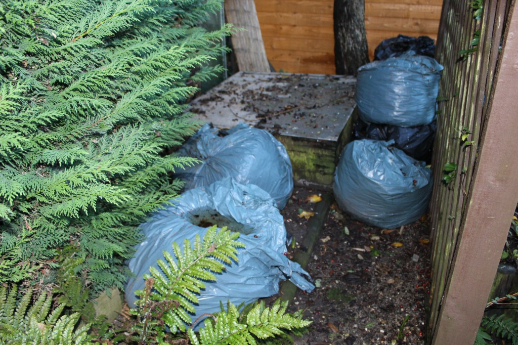 Leaf mould in bin bags