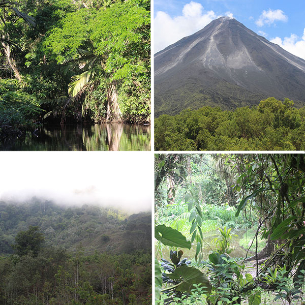 The diverse habitats of Costa Rica