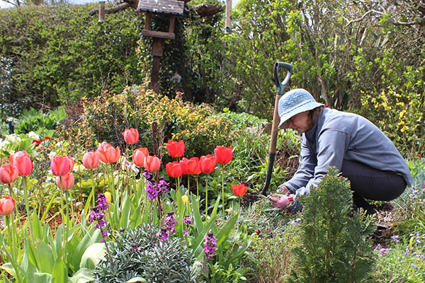stress busting amongst the tulips earlier this year - Garden Therapy