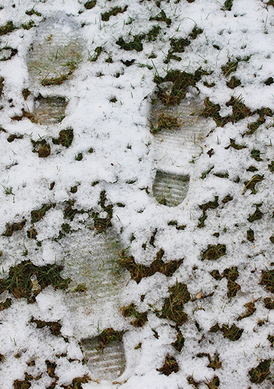 Footprints in the snow – not good for the lawn!