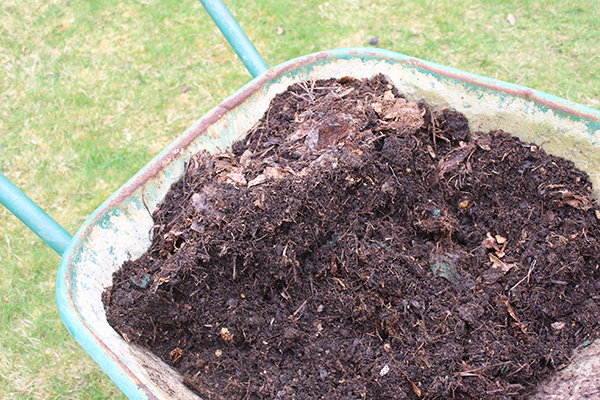 A barrowful of homemade compost - great for spring mulching