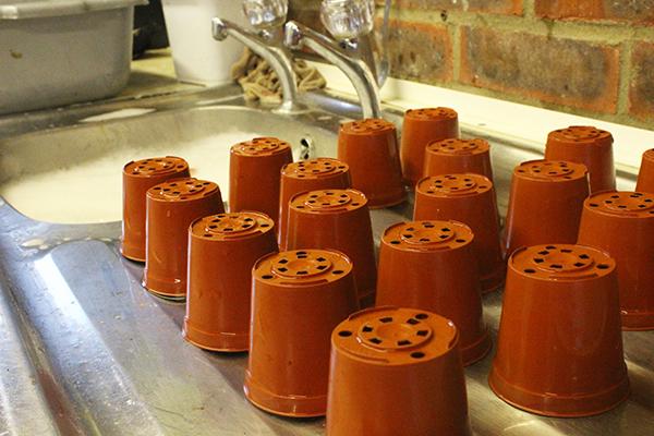 Clean-pots