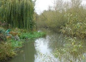 Abingdon mill stream
