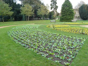formal-garden-Abingdon