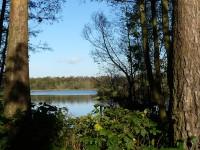 Fleet Pond, Hampshire