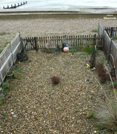 Pebble garden by the sea at Selsey