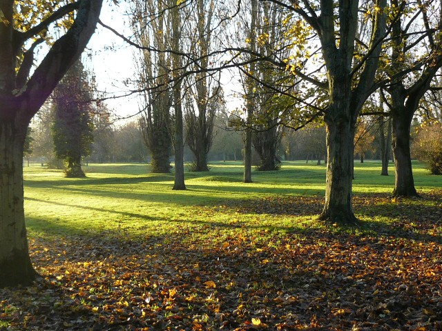 Abbey Meadows park, Nov 2014