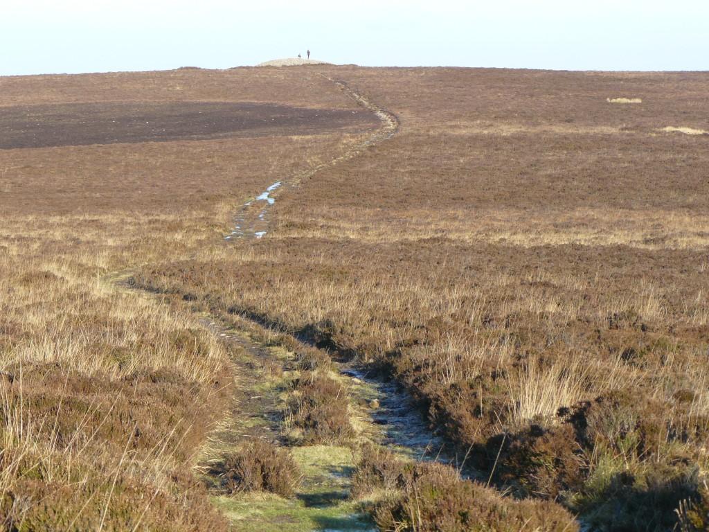 The bracken-strewn moorlands of Exmoor