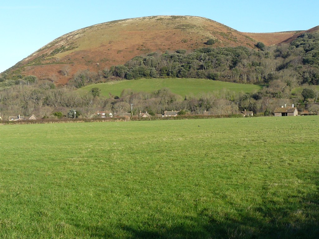 Bossington Hill