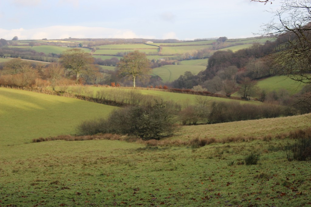 Exe valley view