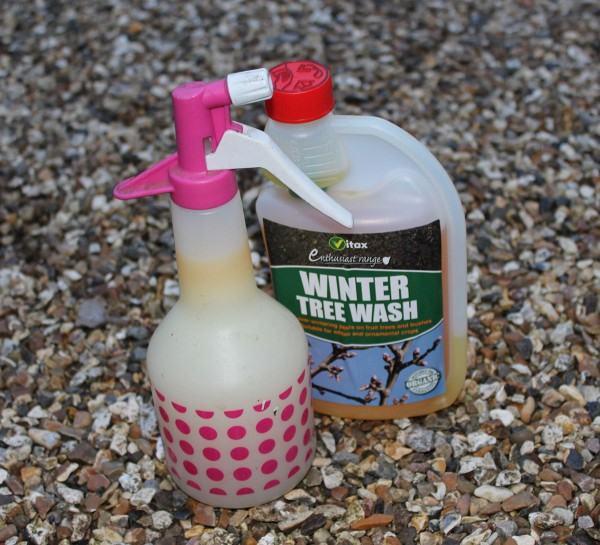 Fruit tree wash and sprayer (other brands are available)