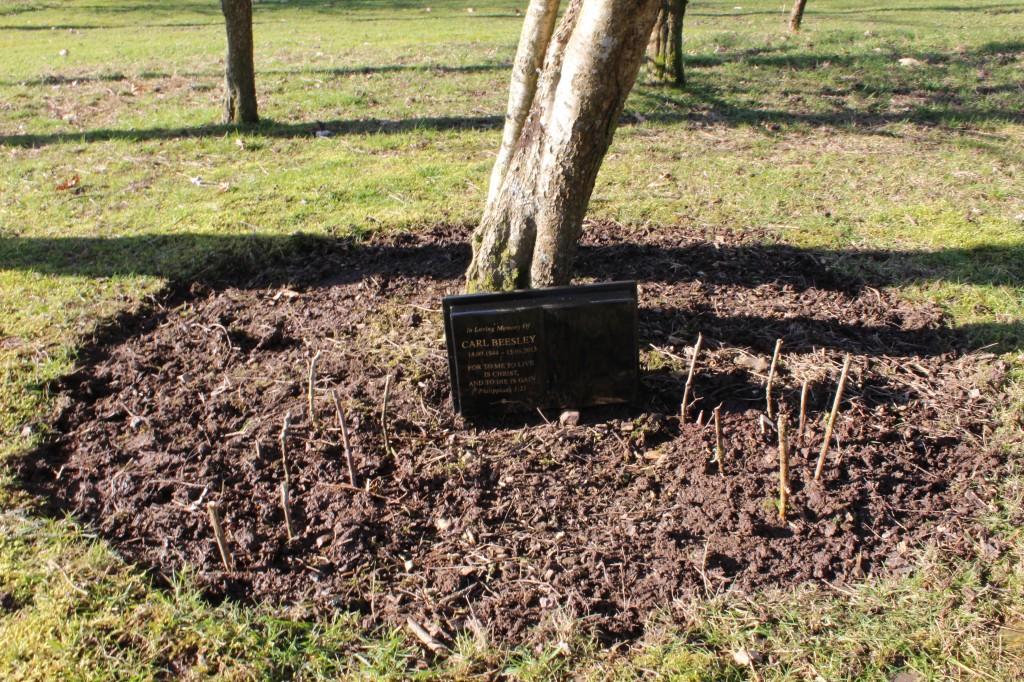 Memorial plot