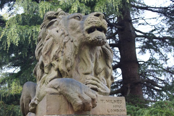 'Determination' Saltaire lion. Originally designed by the sculptor Thomas Milnes of London for the base of Nelson's column in Trafalgar Square. After he had completed the models the commission was taken out of his hands and Sir Titus Salt snapped them up instead