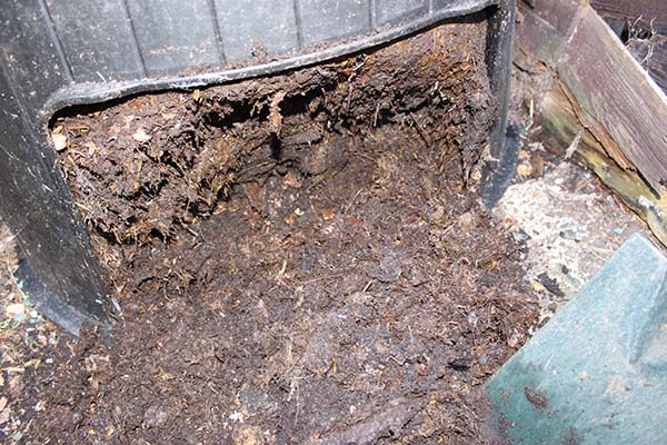 Autumn mulch with compost