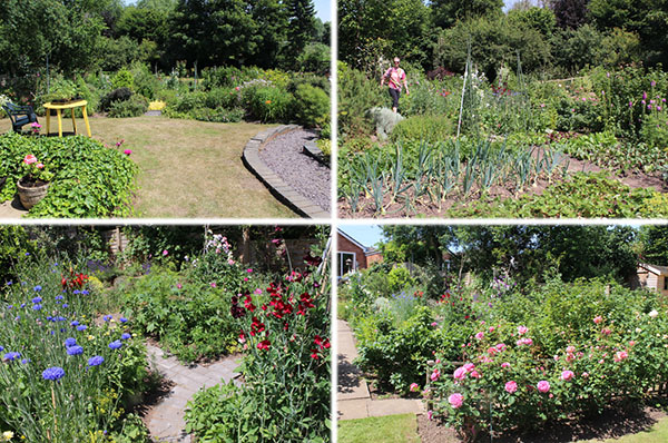 This huge garden had been cleverly divided into three parts. At the top, the living space to relax in comprised a small lawn surrounded by borders and a two-level pond. In the middle, the 'work' area – a huge allotment of vegetables and herbs interspersed with calendula, lupins and foxgloves, and a cut flower area where cornflowers and sweet peas were bursting with colour and scent. At the bottom, a mown meadow with rose beds and fruit trees, which also acts as a flood plain should the river Stour break its banks.
