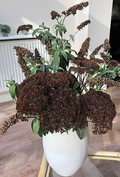 Winter flower arrangement of Buddleja and Sedum