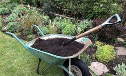 A wheelbarrow full of mulch
